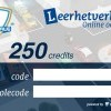Online 250 theorievragen oefenen